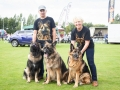 Karolyn & Steve Grimmitt Central German Shepherd Rescue, Jax, Milo & Misha