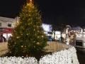 Spalding Xmas Tree-16