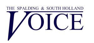 Voice logo 4